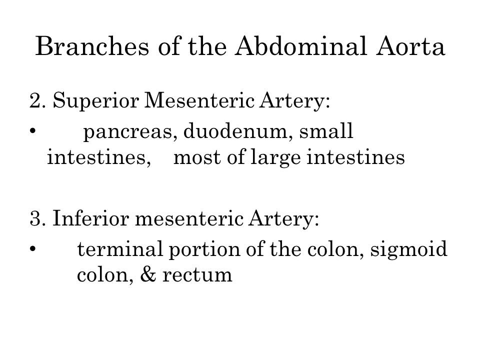 Branches of the Abdominal Aorta