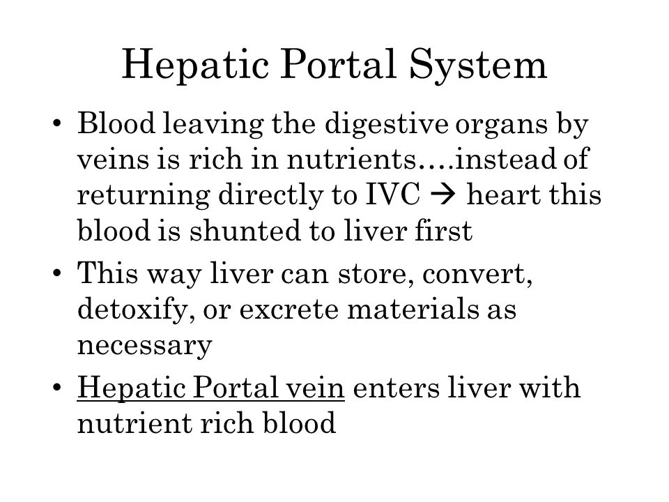 Hepatic Portal System