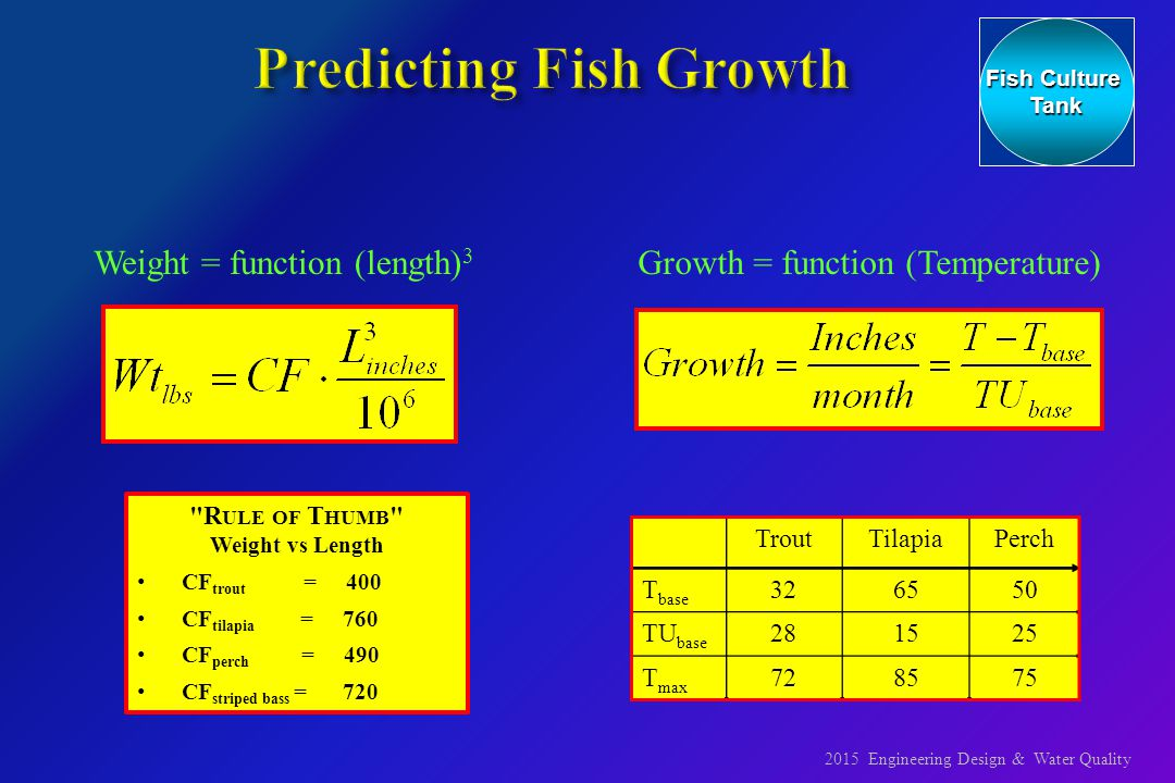 An engineer 39 s view of recirculating aquaculture systems for Fish tank volume calculator