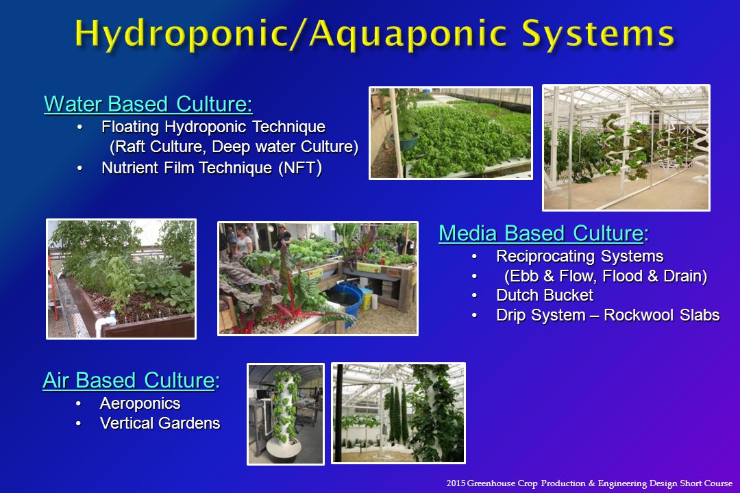 An engineer 39 s view of recirculating aquaculture systems for Hydroponic raft system design