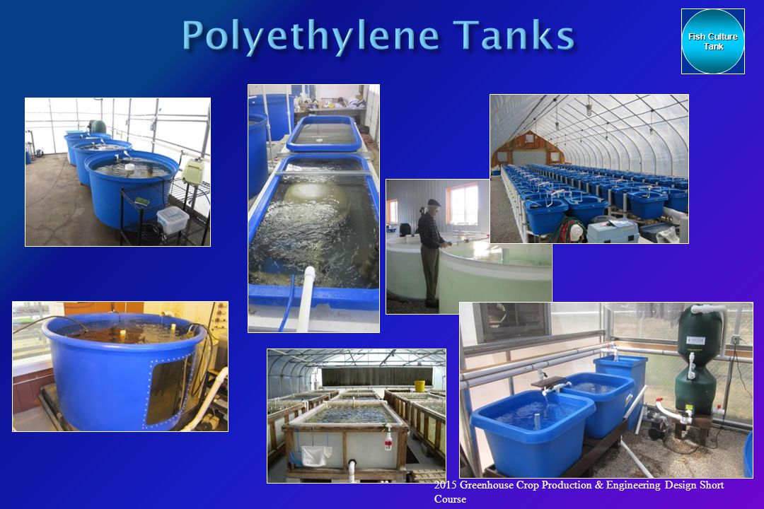 An engineer 39 s view of recirculating aquaculture systems for Well water for fish tank