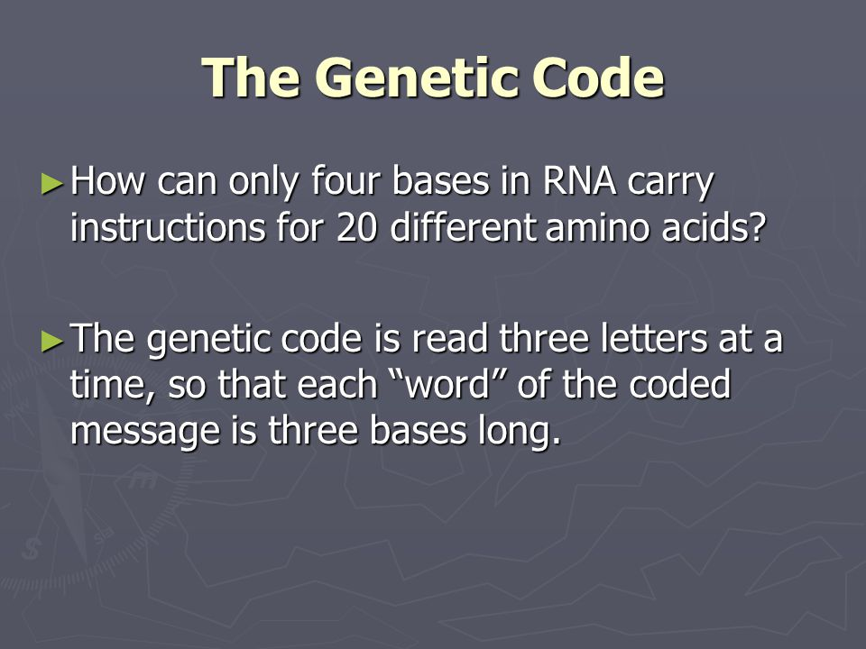 The Genetic Code How can only four bases in RNA carry instructions for 20 different amino acids