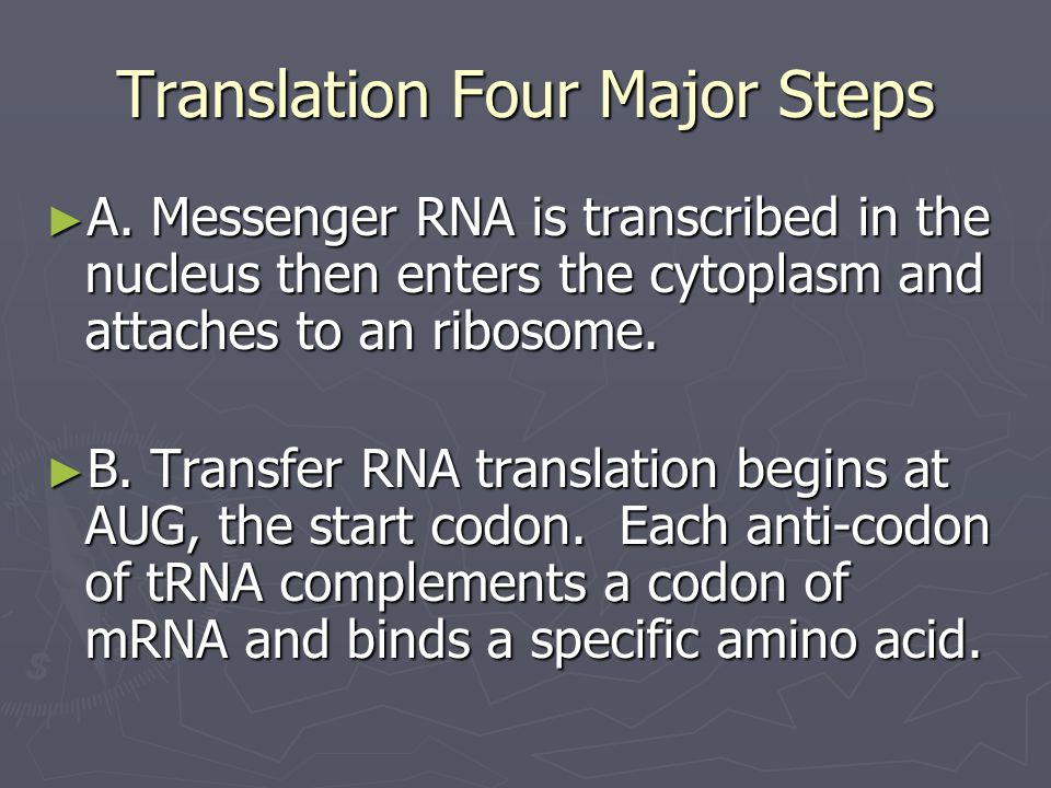 Translation Four Major Steps
