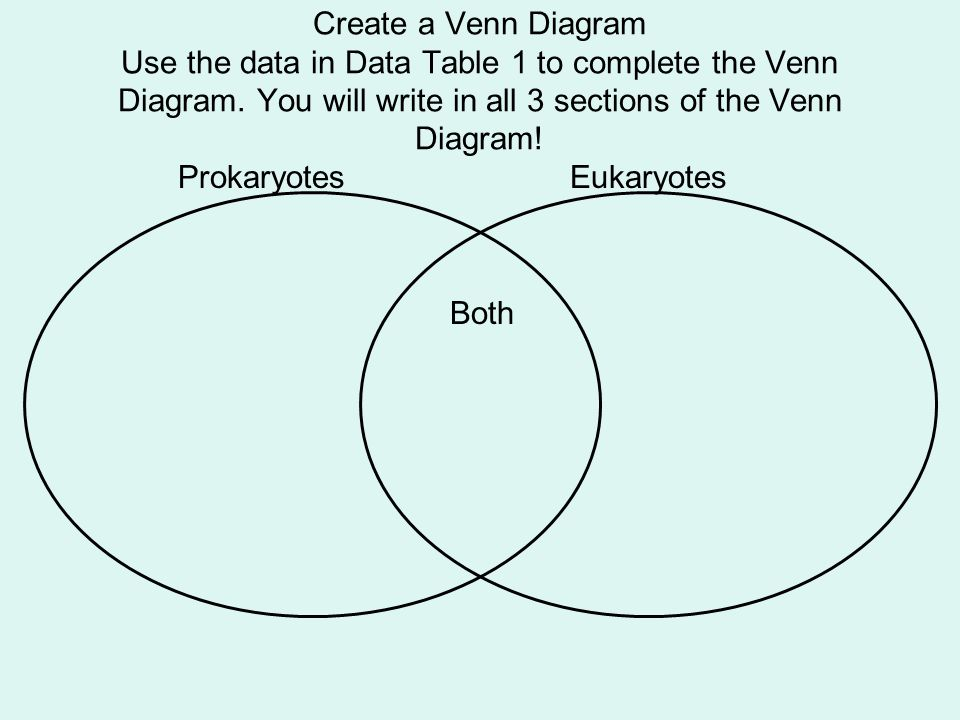 prokaryotic versus eukaryotic cells