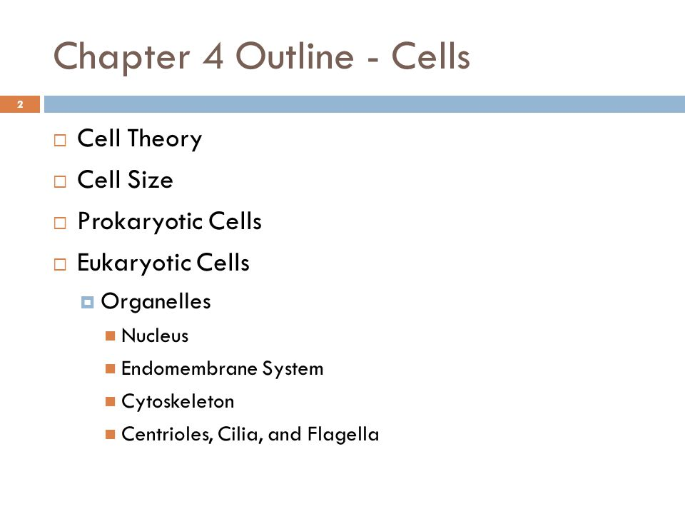 biology chapter 6 outline Evolution notes the theory of  the theory of evolution remains one of the most useful theories in biology because it explains many questions and observations.