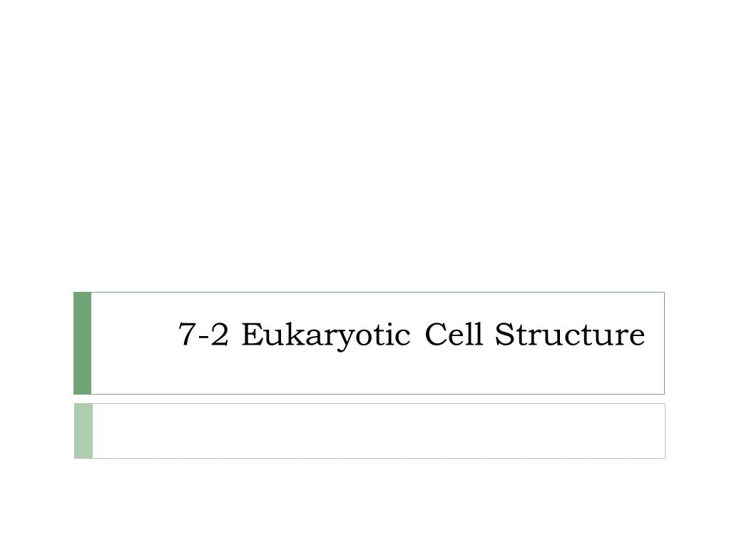 7 2 Eukaryotic Cell Structure Ppt Video Online Download