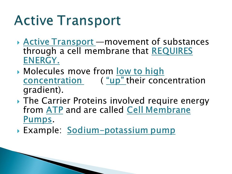 transport of substances through the cell Structural biochemistry/lipids/membrane transport no energy for the transport of molecules and substances through the that weave through the cell.