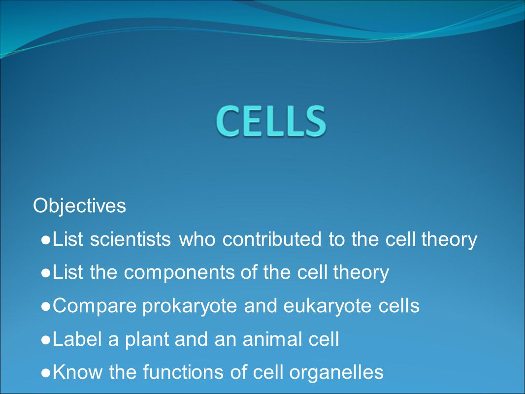 early cells Describes the first cells and the evolution of photosynthesis and cellular  respiration.