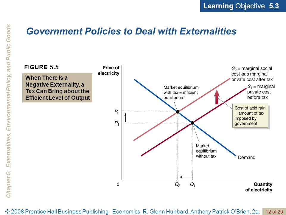 Current and expected government policies regulations and externalities