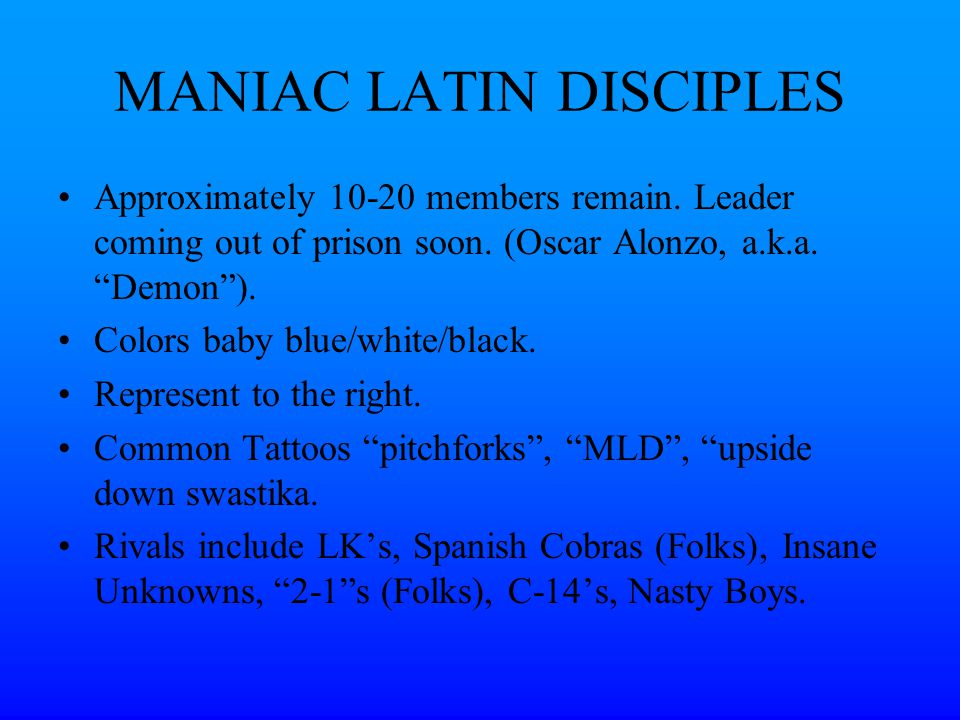 Manic Latin Disciples 97