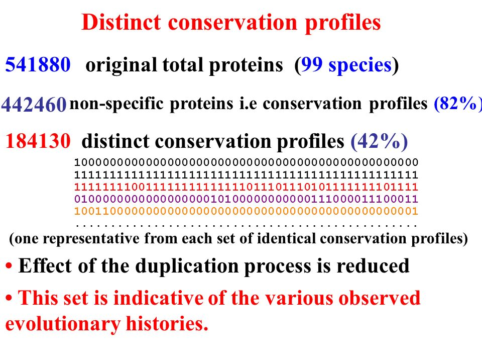 Distinct conservation profiles