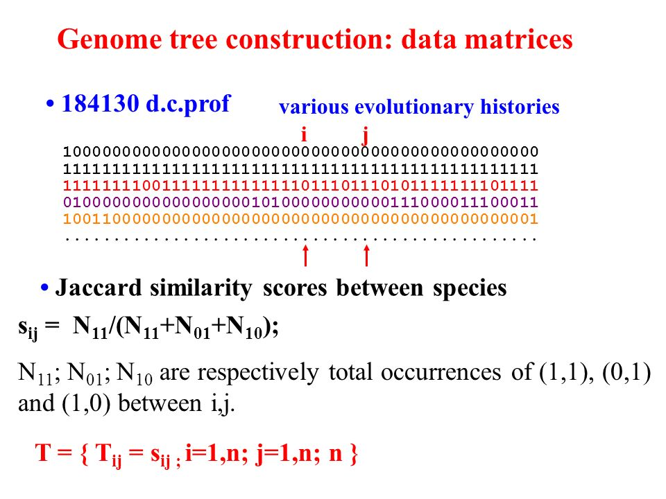 Genome tree construction: data matrices