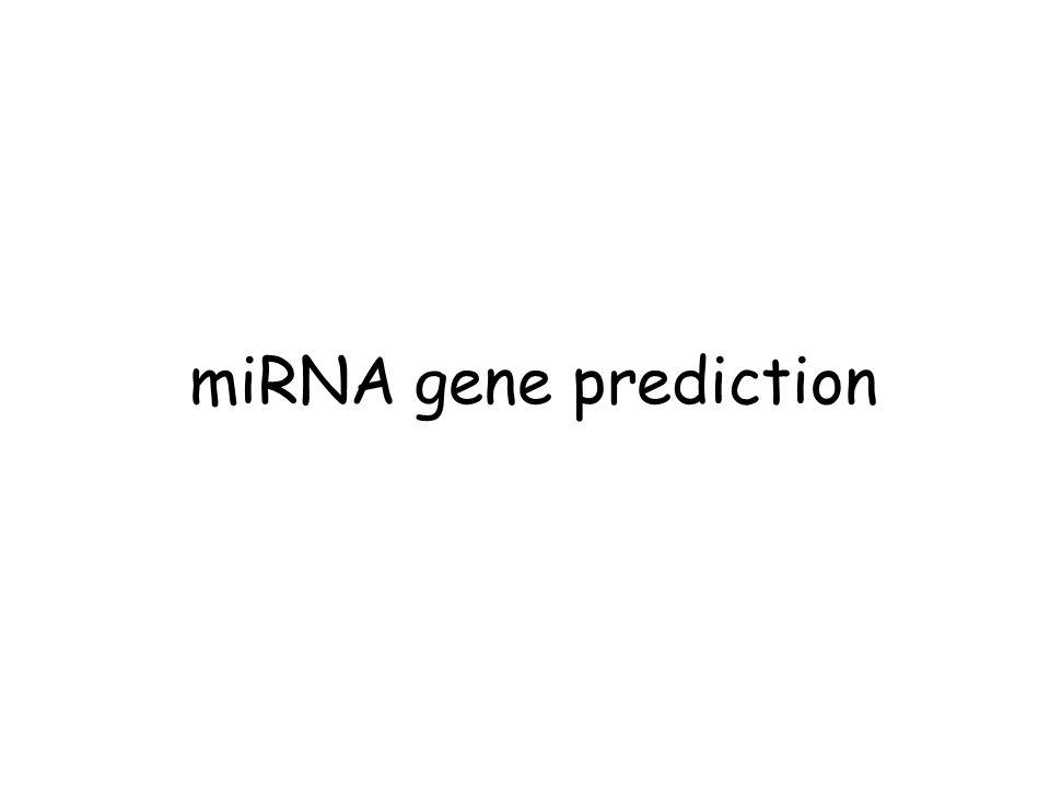 miRNA gene prediction