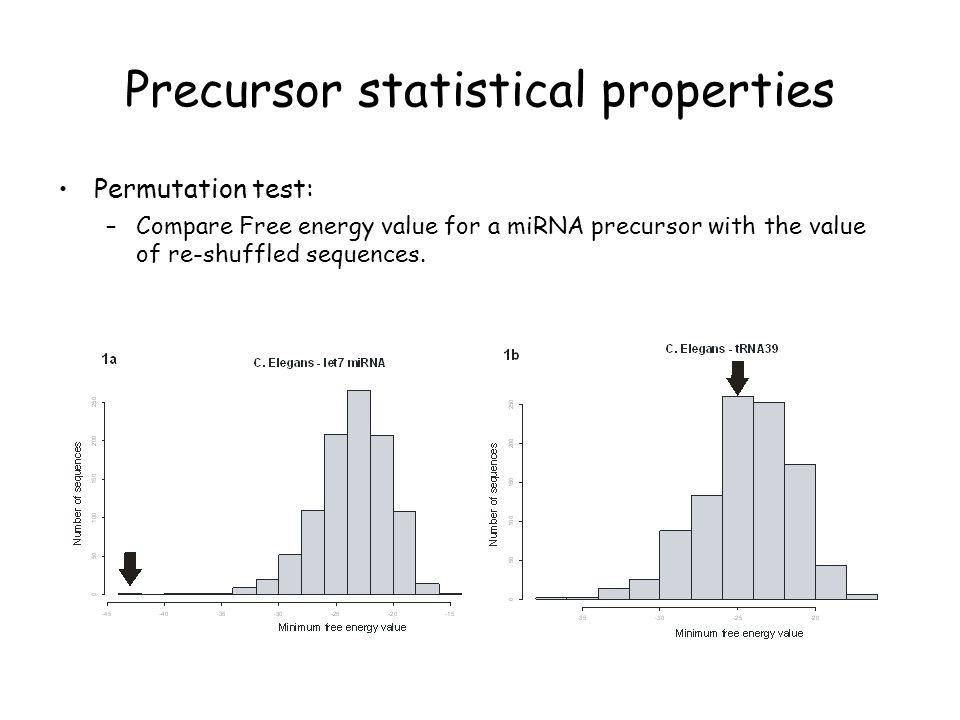 Precursor statistical properties