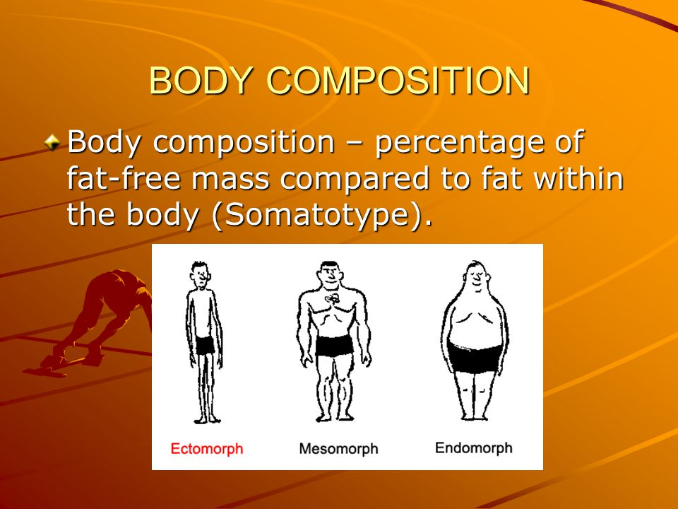 BODY COMPOSITION Body composition – percentage of fat-free mass compared to fat within the body (Somatotype).