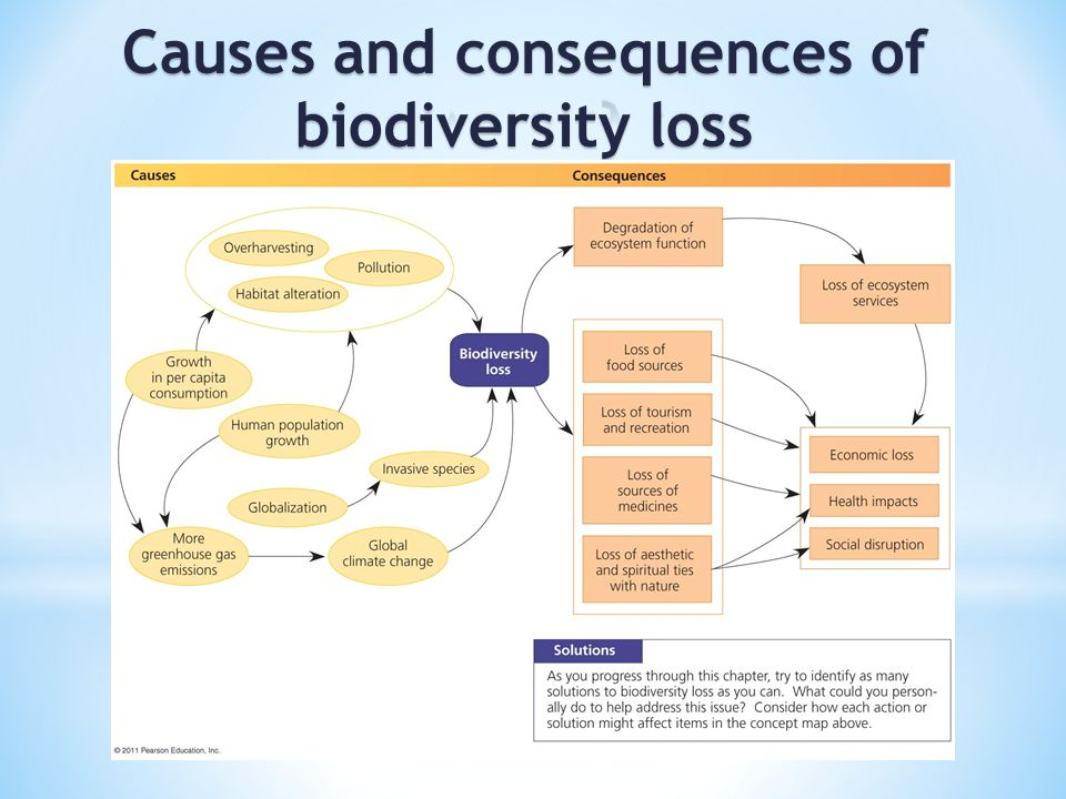 biodiversity and extinction The biodiversity of an area is literally the number of species, both plant and animal, inhabiting the environment being examined when a species is no longer found in.