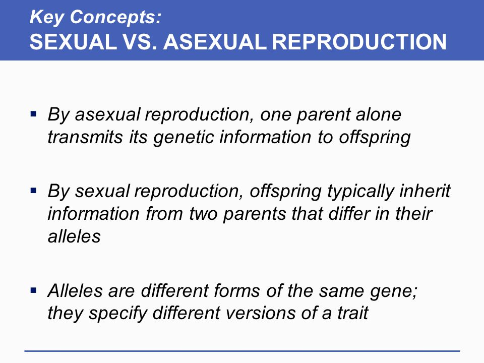 asexual vs sexual reproduction notes What to take notes on when you see something that is underlined and in a different coloryou should take notes on it don't take notes on something that looks like this –this is stuff that you should read and think about, but it's not stuff you will need to retain or remember for future lessons or assessments.