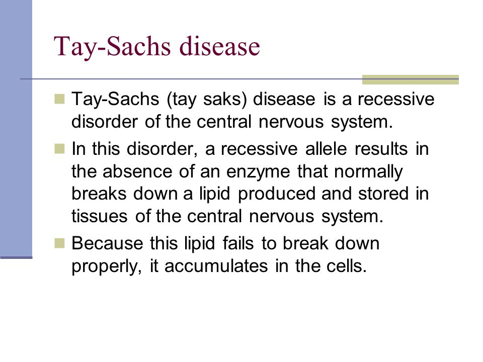 tay sachs essay Free sample essay on physiological psychology: the symptoms and causes of phenylketonuria, galactosemia and tay-sachs disease easygoessaycom can help you write an essay on the topic of physiological psychology.
