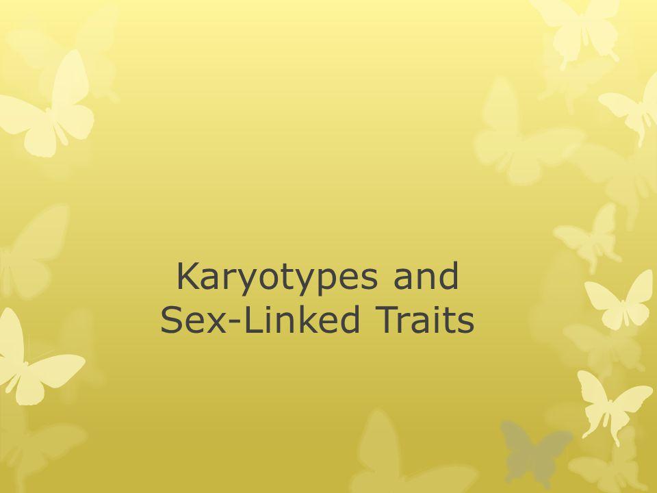 Karyotypes and Sex-Linked Traits