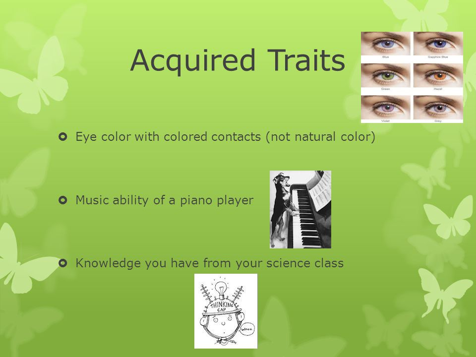 Traits Inherited Vs Acquired Ppt Download