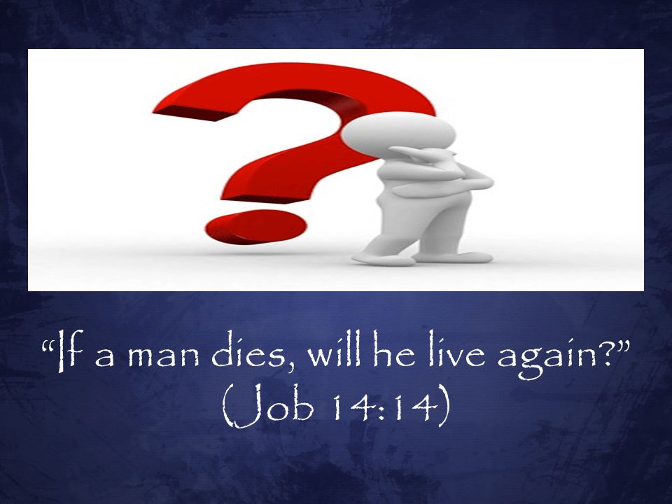 If a man dies, will he live again
