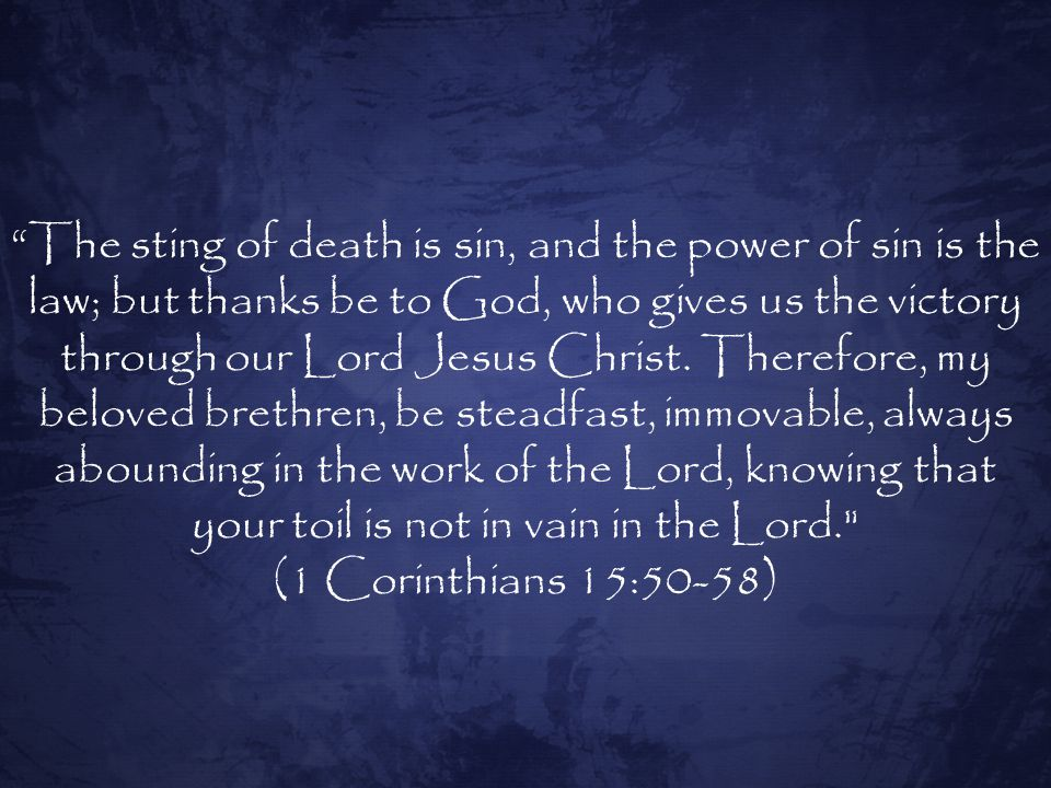 The sting of death is sin, and the power of sin is the law; but thanks be to God, who gives us the victory through our Lord Jesus Christ. Therefore, my beloved brethren, be steadfast, immovable, always abounding in the work of the Lord, knowing that your toil is not in vain in the Lord.