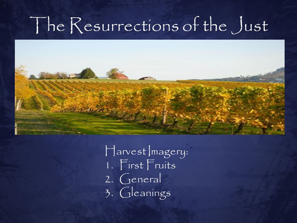 The Resurrections of the Just