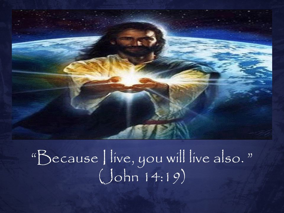 Because I live, you will live also.