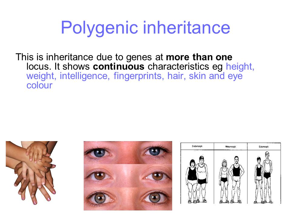 Inheritance. - ppt video online download