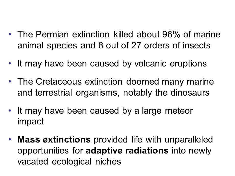 The Permian extinction killed about 96% of marine animal species and 8 out of 27 orders of insects