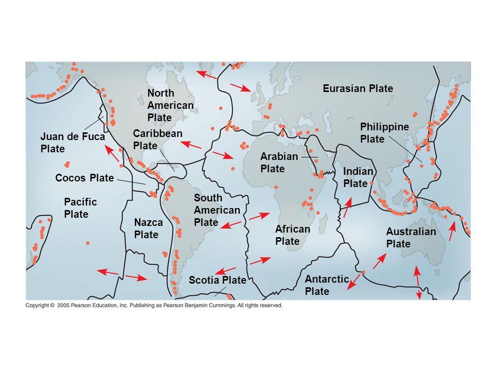 Eurasian Plate North. American. Plate. Philippine. Plate. Juan de Fuca. Plate. Caribbean. Plate.