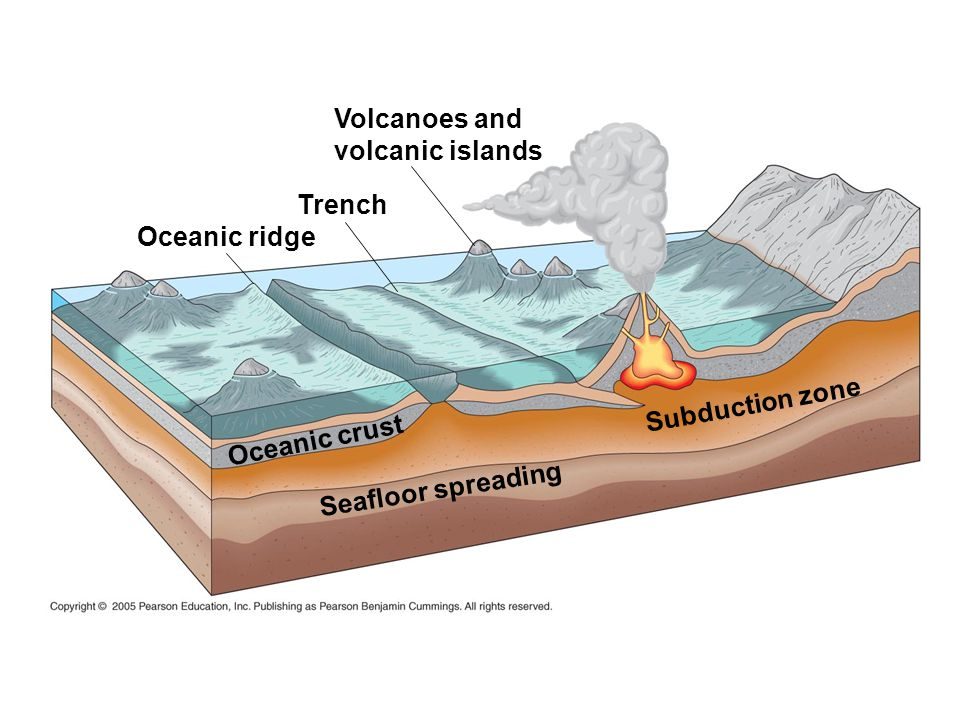 Volcanoes and volcanic islands. Trench. Oceanic ridge.