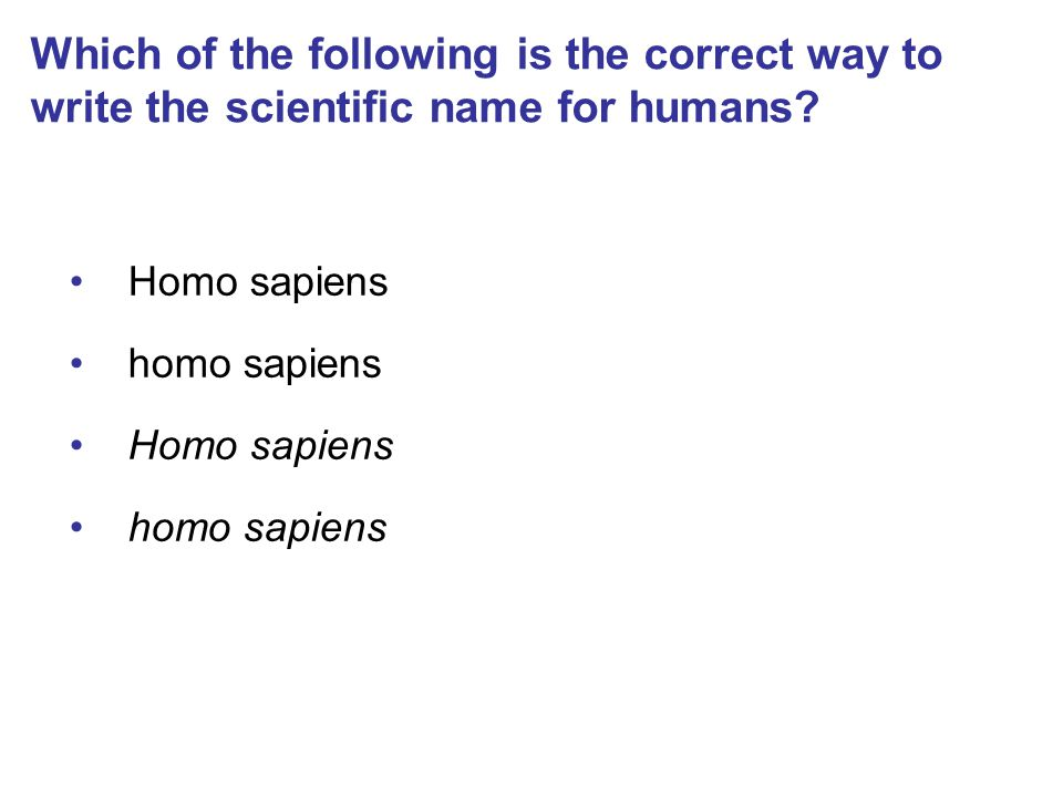 Which of the following is the correct way to write the scientific name for humans