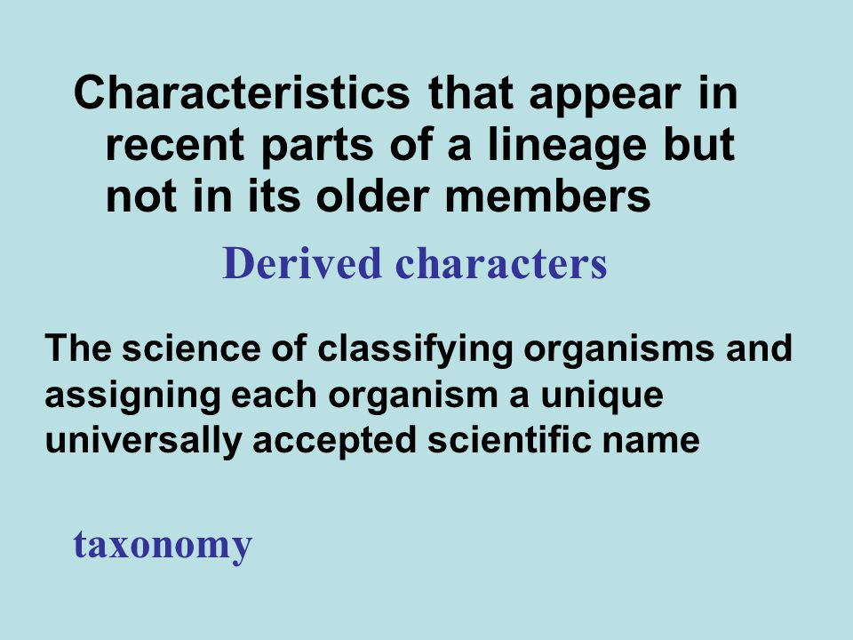Characteristics that appear in recent parts of a lineage but not in its older members