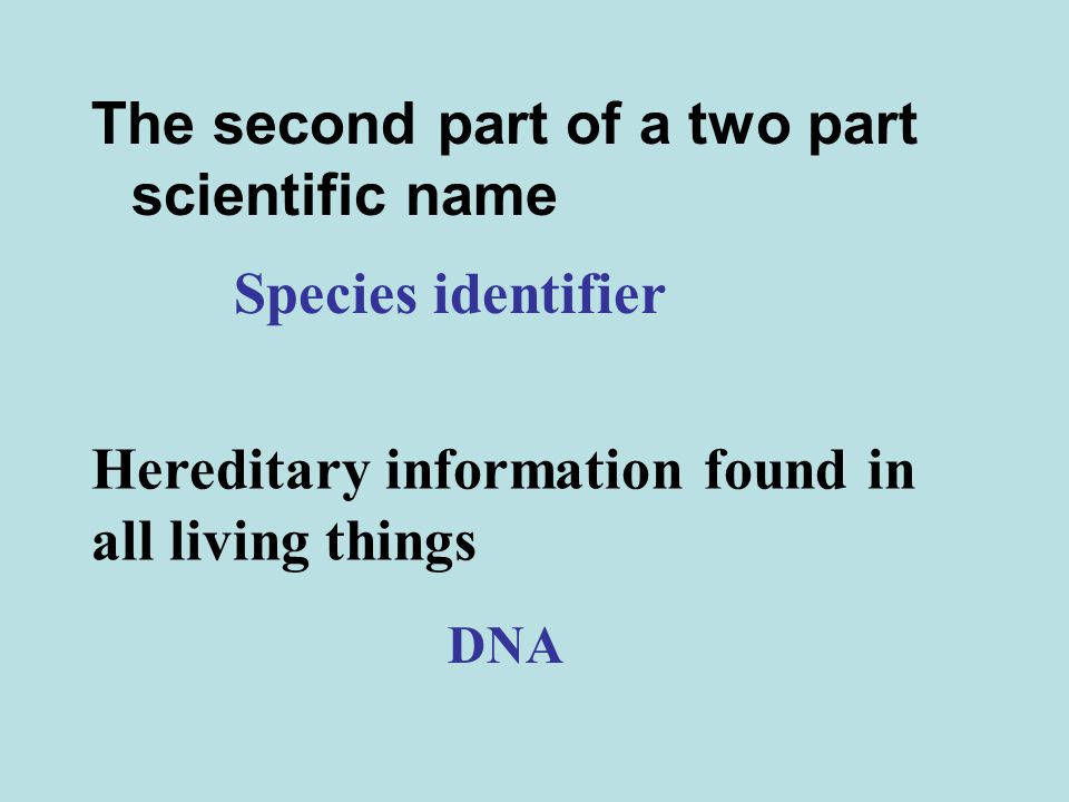 The second part of a two part scientific name