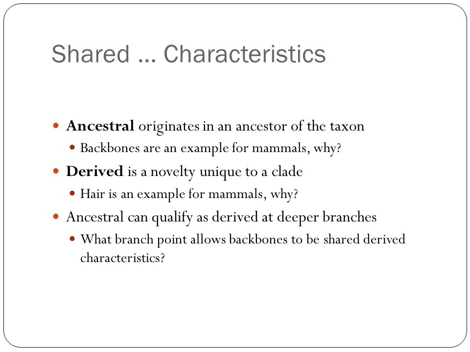 Shared … Characteristics