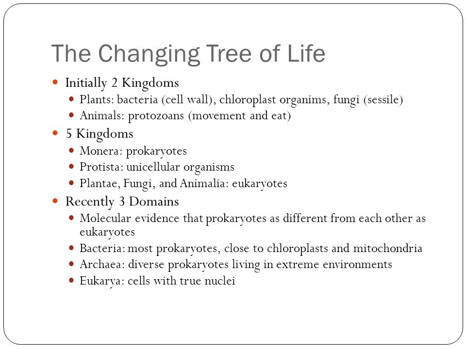The Changing Tree of Life