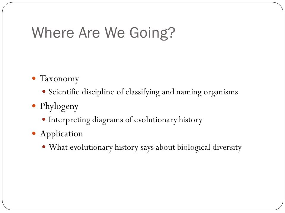 Where Are We Going Taxonomy Phylogeny Application