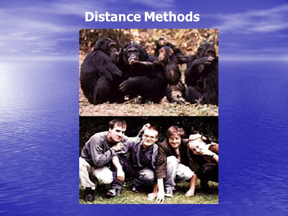 Distance Methods