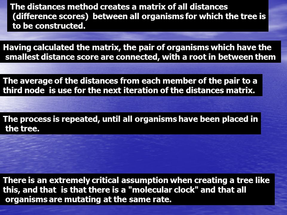 The distances method creates a matrix of all distances