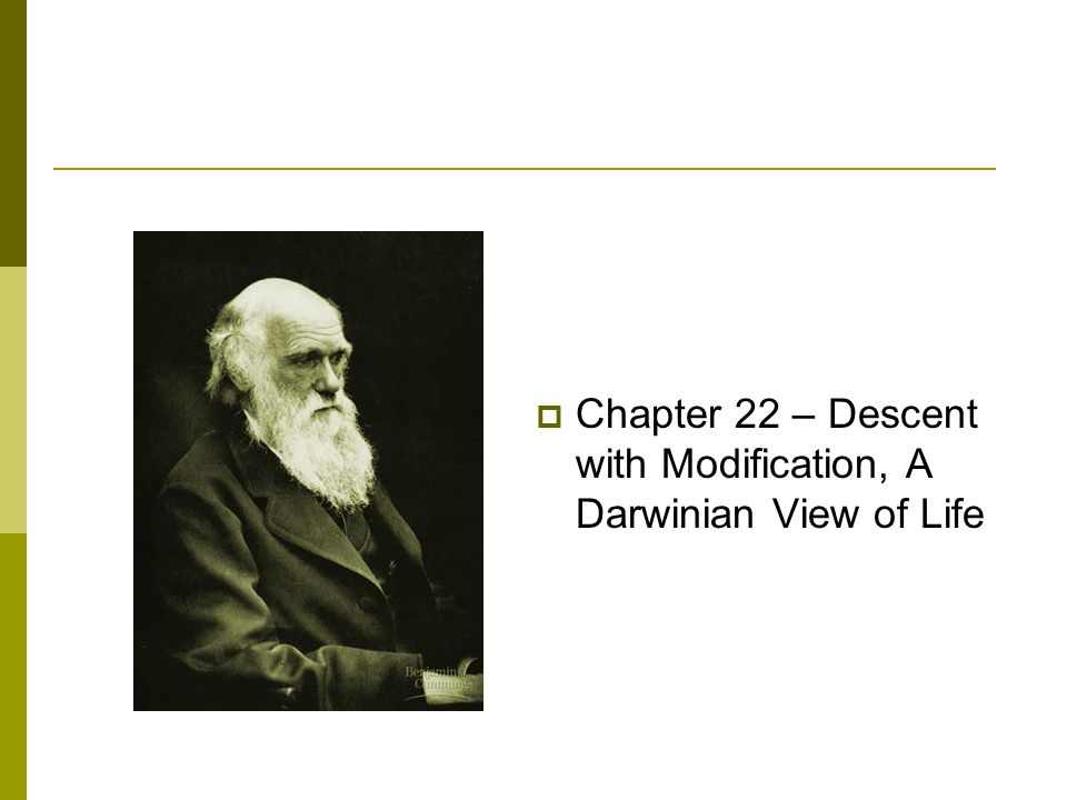 Chapter 22 – Descent with Modification, A Darwinian View of Life