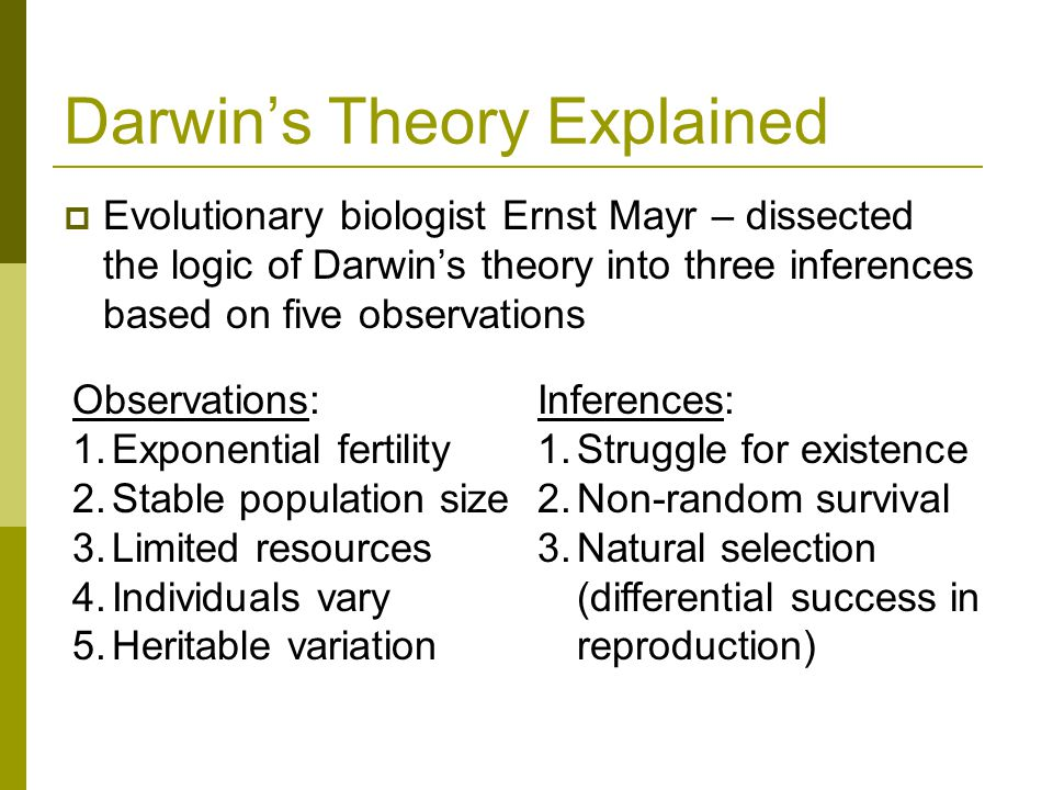 darwins theory on natural selection The phrase 'darwin's finches' has entered language summing up the processes of natural selection.