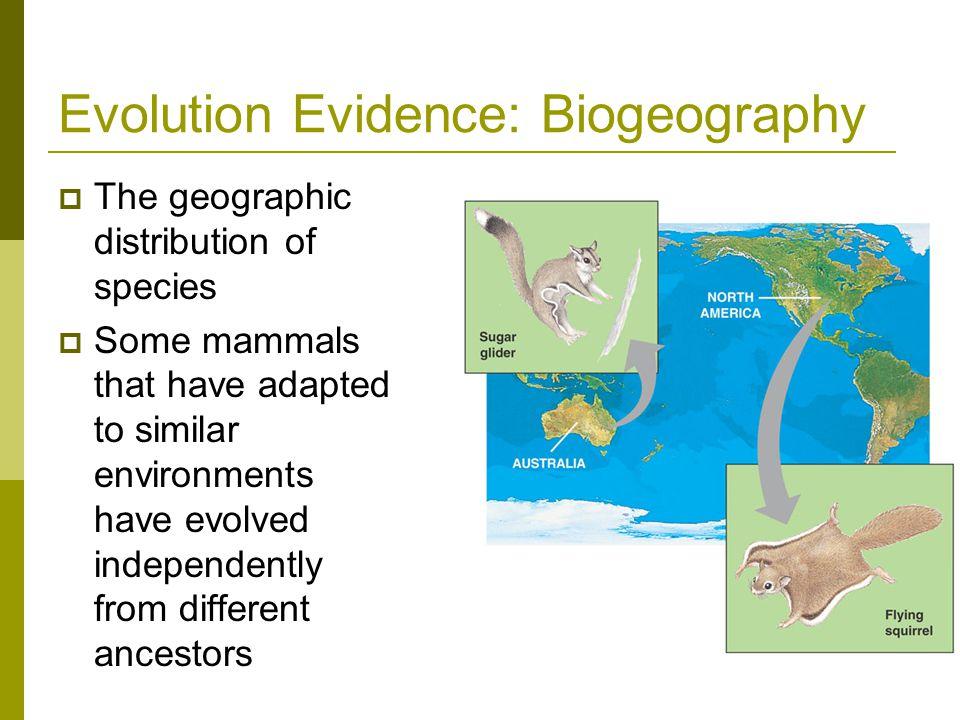 Evolution Evidence: Biogeography