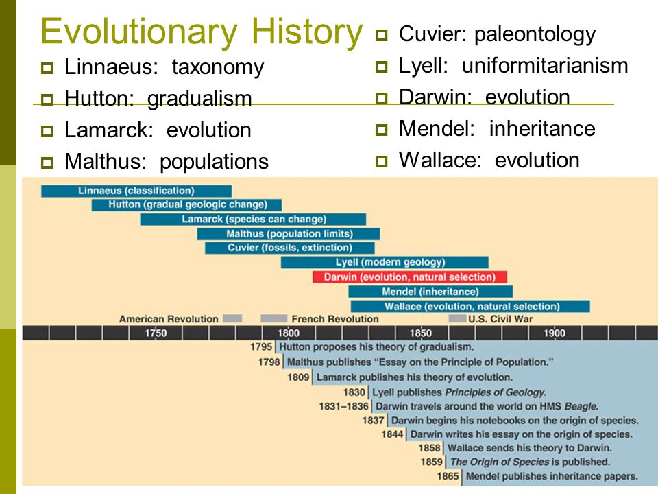 Evolutionary History Cuvier: paleontology Lyell: uniformitarianism