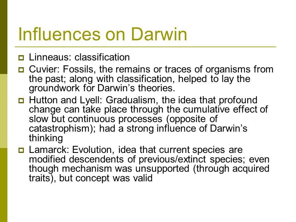 Influences on Darwin Linneaus: classification