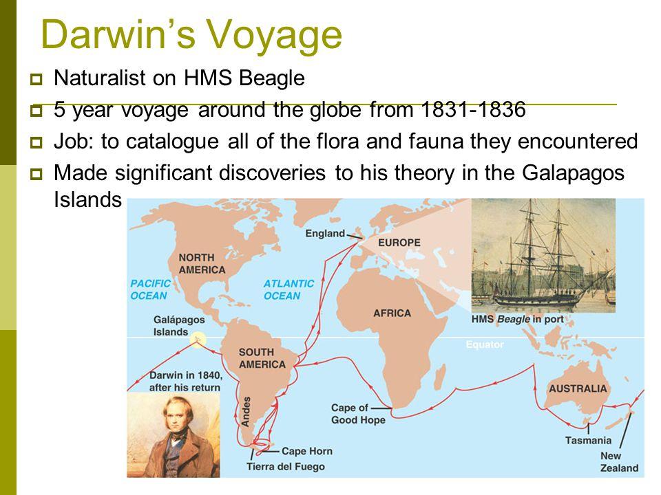 Darwin's Voyage Naturalist on HMS Beagle