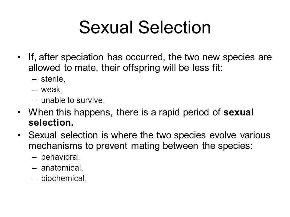 Sexual Selection If, after speciation has occurred, the two new species are allowed to mate, their offspring will be less fit: