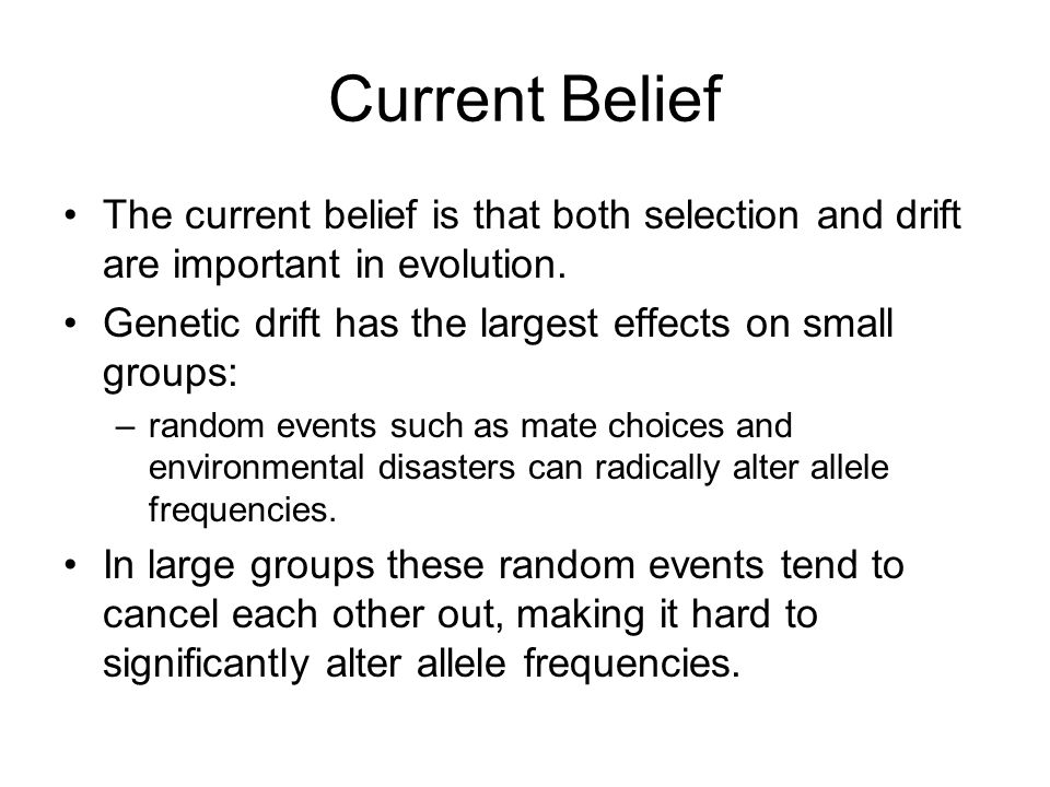 Current Belief The current belief is that both selection and drift are important in evolution.