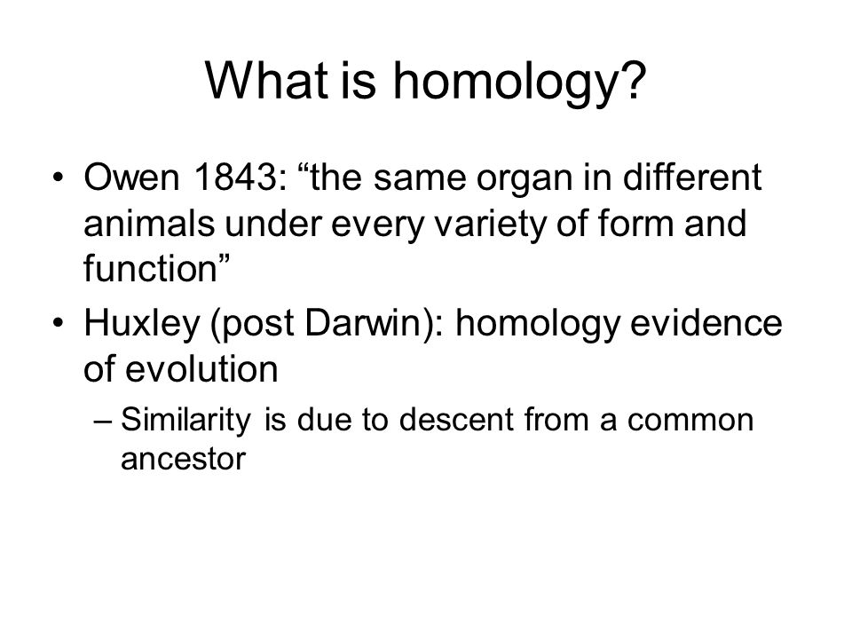 What is homology Owen 1843: the same organ in different animals under every variety of form and function