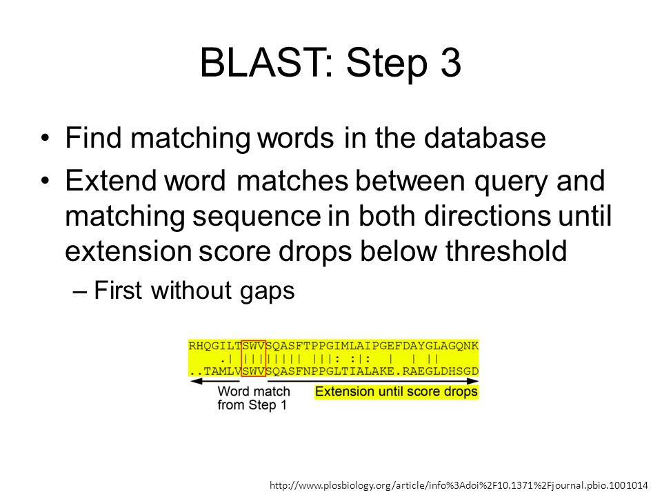 BLAST: Step 3 Find matching words in the database